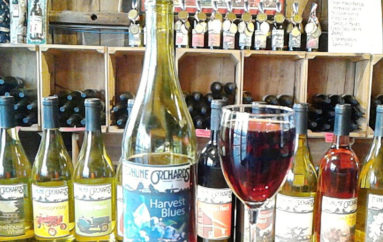 Terhune Orchards Wins Governor's Cup and Nine Medals in annual New Jersey Wine Competition
