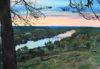 """""""Portraits of Preservation"""": James Fiorentino Watercolors of DRG Preserves – 12/6 til 2/28/20"""