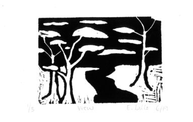 """Nature in Black & White"": Stuart Students' Lino-Cuts re-create Emergence of Spring"