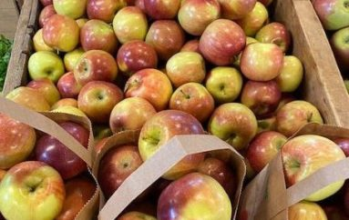 Keeping Healthy with Fresh Produce from Terhune Orchards