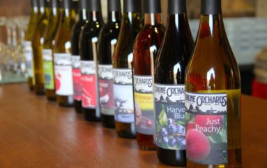 Terhune Orchards Vineyards & Winery Re-Opens This Week! Open Space, Outdoor Seating & Weekend Music