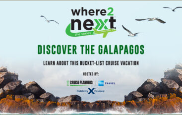 Discover the Galapagos
