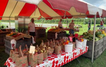Fall Family Fun Weekends & Apple Picking Season at Terhune Orchards.